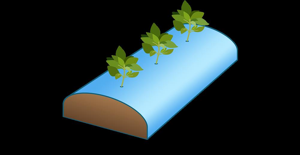 talajtakaró fólia (bakhát fólia, szamóca fólia)